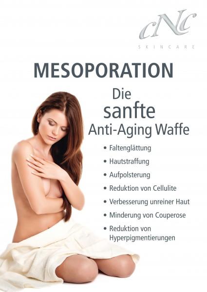 Poster A1 Mesoporation
