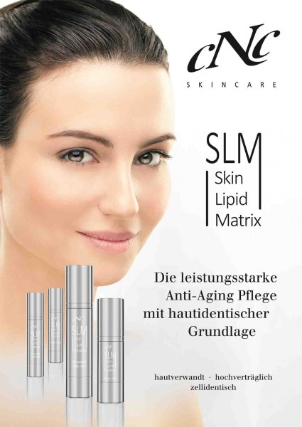 Poster A2 Skin Lipid Matrix